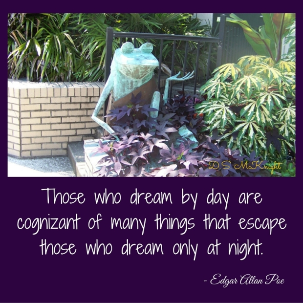 Those who dream by day are cognizant of (1)