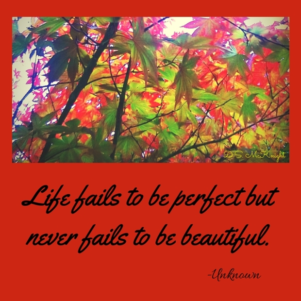 Life fails to be perfect but it never fails to be beautiful.