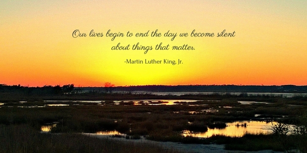 Our lives begin to end the day we become silent about things that matter. -Martin Luther King, Jr.
