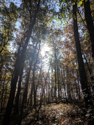 Hiking at Babcock State Park